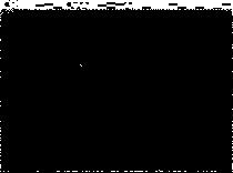 2d_210px_notextC